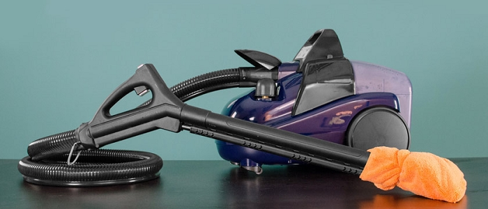 Gaia Steam Cleaner