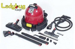 Ladybug 2300 Continuous Fill Steam Dry Vapor System with TANCS (66 PSI)