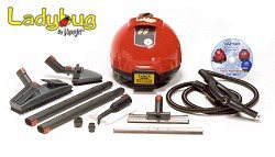 Ladybug 2200S Continuous Fill Steam Dry Vapor System with TANCS (60 PSI)