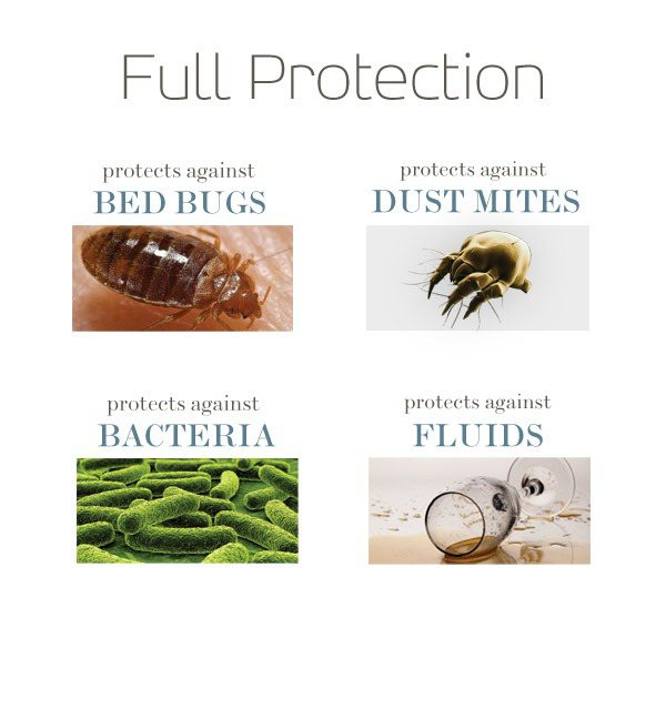 Saferest Zippered Bed Bug Proof Pillow Protector
