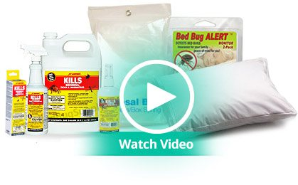 Bed Bug Travel Protection At Bed Bug Supply