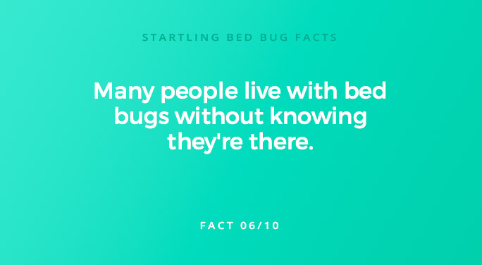 Many people live with bed bugs without knowing they're there.