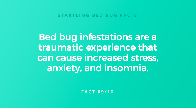 Bed bug infestations are a traumatic experience that can cause increased stress, anxiety, and insomnia.