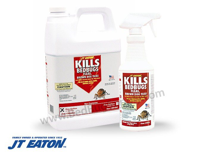 Spray That Kills Bed Bugs 28 Images Shop Hot Shot Bedbug And Flea 1 Gallon Insect Killer At