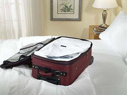Bed Bug Sealed Luggage Liners