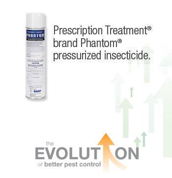 Does Phantom Bed Bug Spray Work
