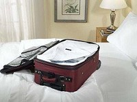 Bed Bug Sealed Luggage Liners DISCONTINUED